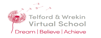 A picture of the virtual schools logo